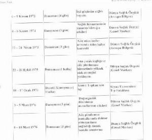 ULUSLARARASI GEÇİCİ GÖREVLER-3